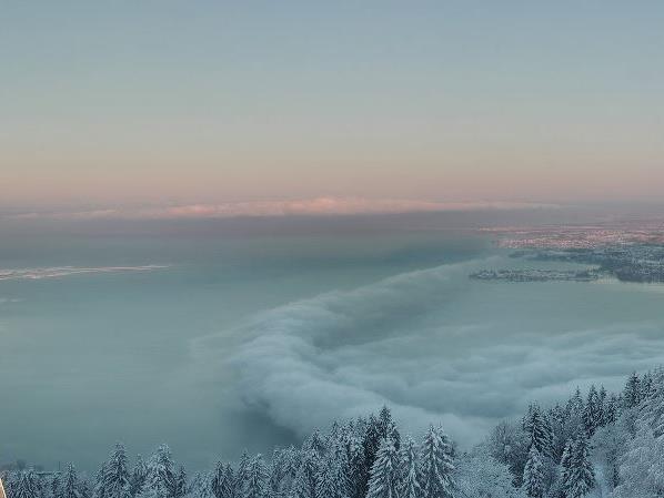 Bodensee bei Bregenz am Sonntag, 10 Februar um 8 Uhr in der Früh.