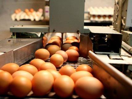 Millionen Eier wurden angeblich falsch deklariert.