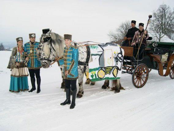 Stilvoll mit der Kutsche wird das Bregenzer Prinzenpaar ins Landhaus rollen.