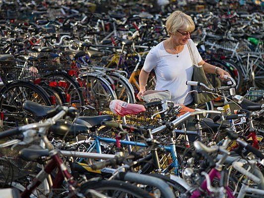 Das Fahrrad erfreut sich nun wieder größter Beliebtheit