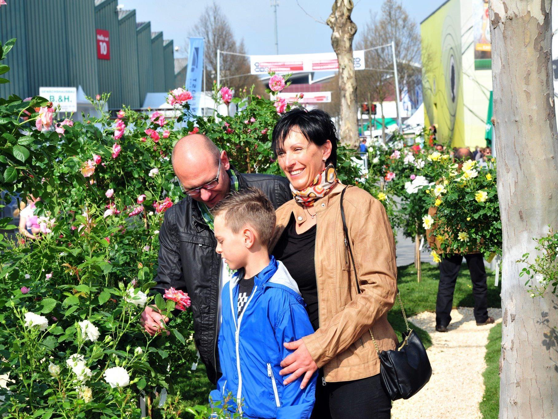 Nur ein Schwerpunkt der Frühjahrsmesse: Alles rund um Garten & Co.