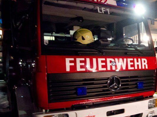 Die Feuerwehr konnte den Pkw-Brand rasch unter Kontrolle bringen.