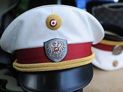 200 Autodiebstähle konnte die Wiener Polizei aufklären.
