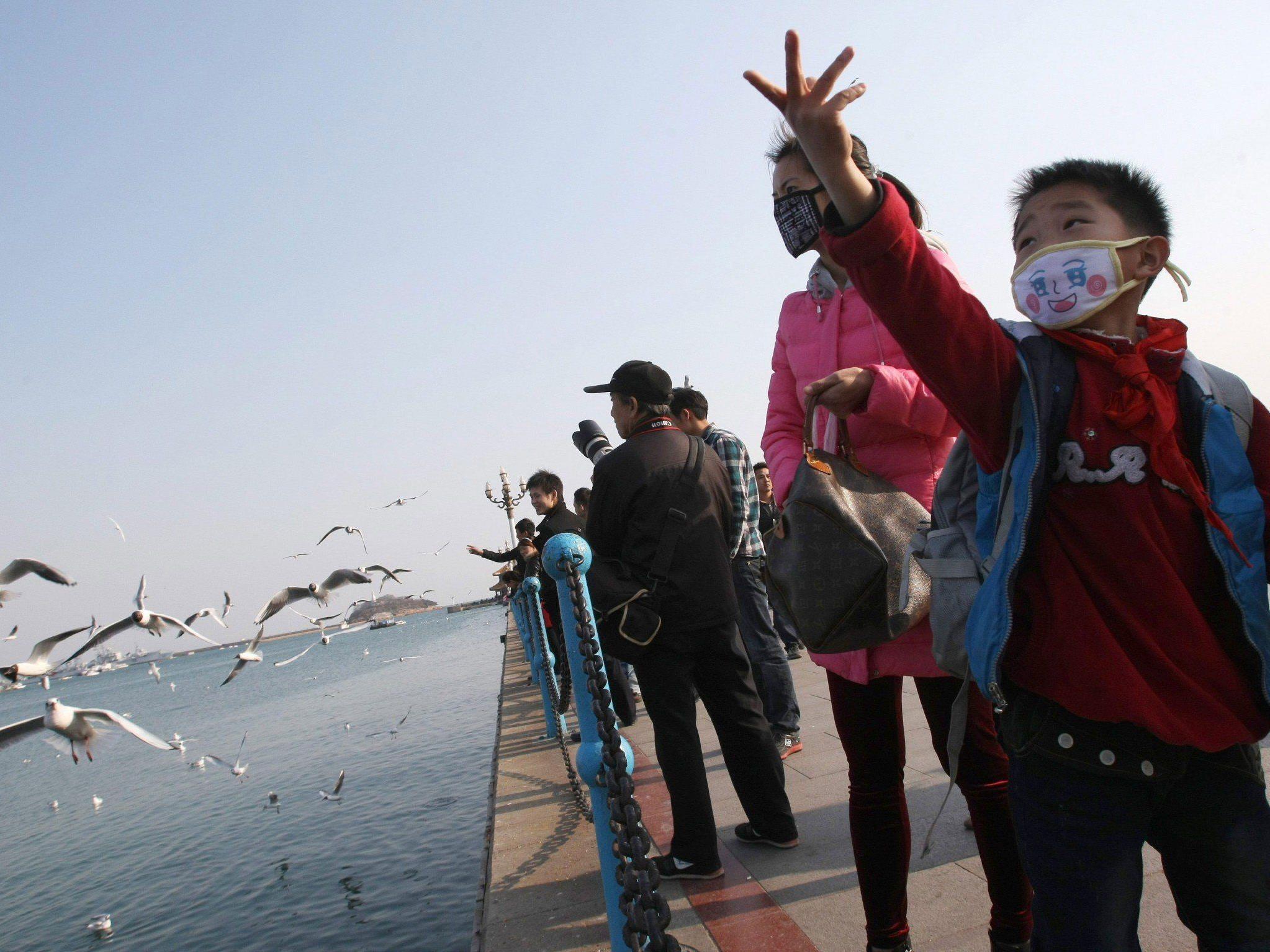 Neun Personen durch Vogelgrippevirus H7N9 gestorben.