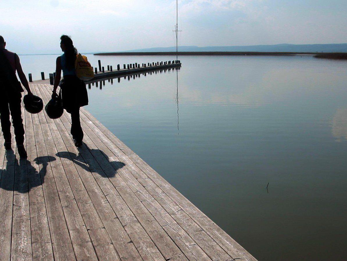 Ein Fischer barg eld Flakgranaten aus dem Neusiedler See.