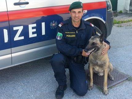 """GI Wolfgang Lengauer, Diensthundeführer der DHI Wr. Neustadt, mit seinem Hund """"Zenith Le Bousser""""."""