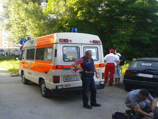 Wiener Neustadt sucht nach einem zweijährigen Buben