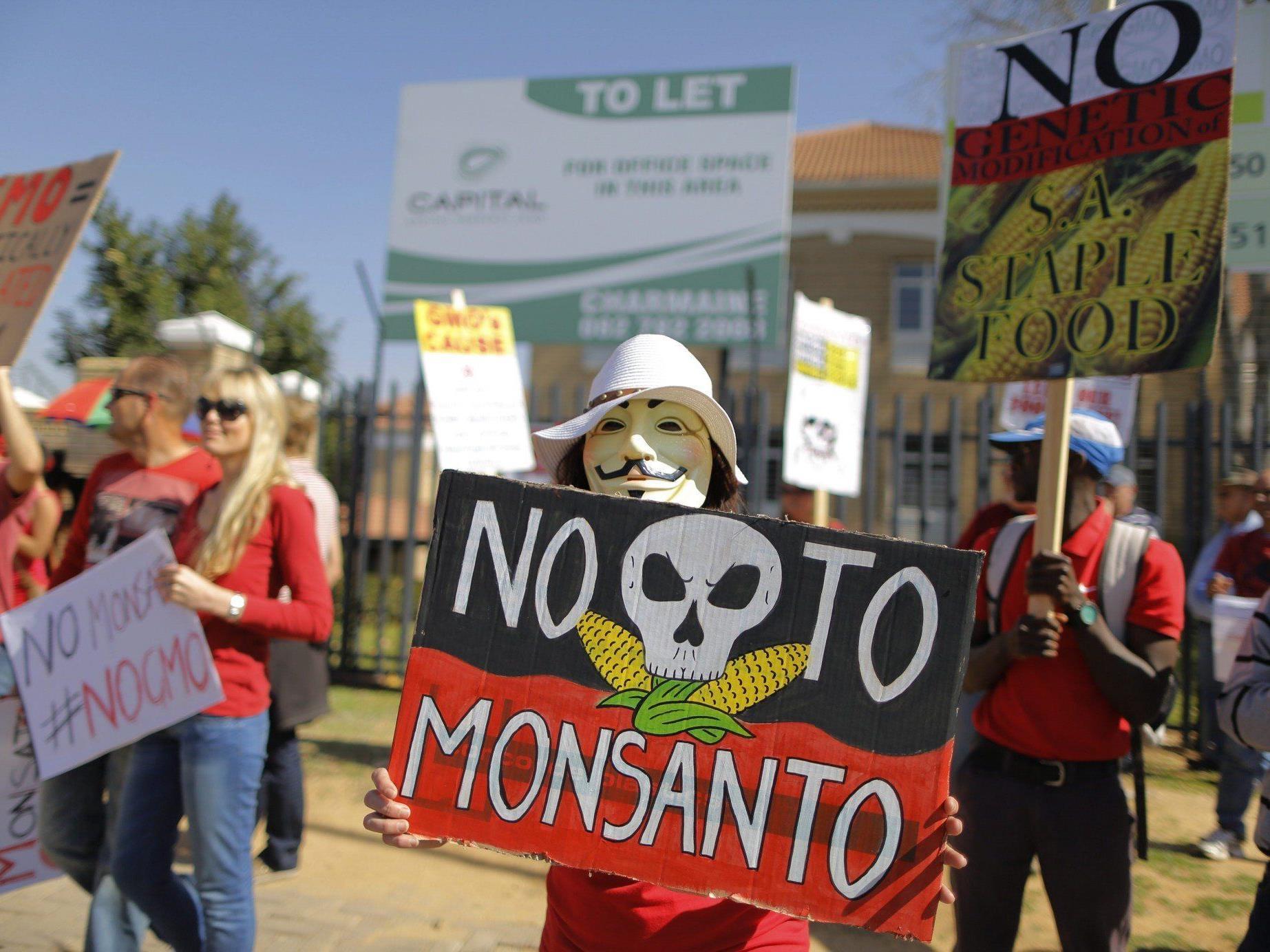 Monsanto: Feldversuch mit Gen-Weizen begann bereits 2011.
