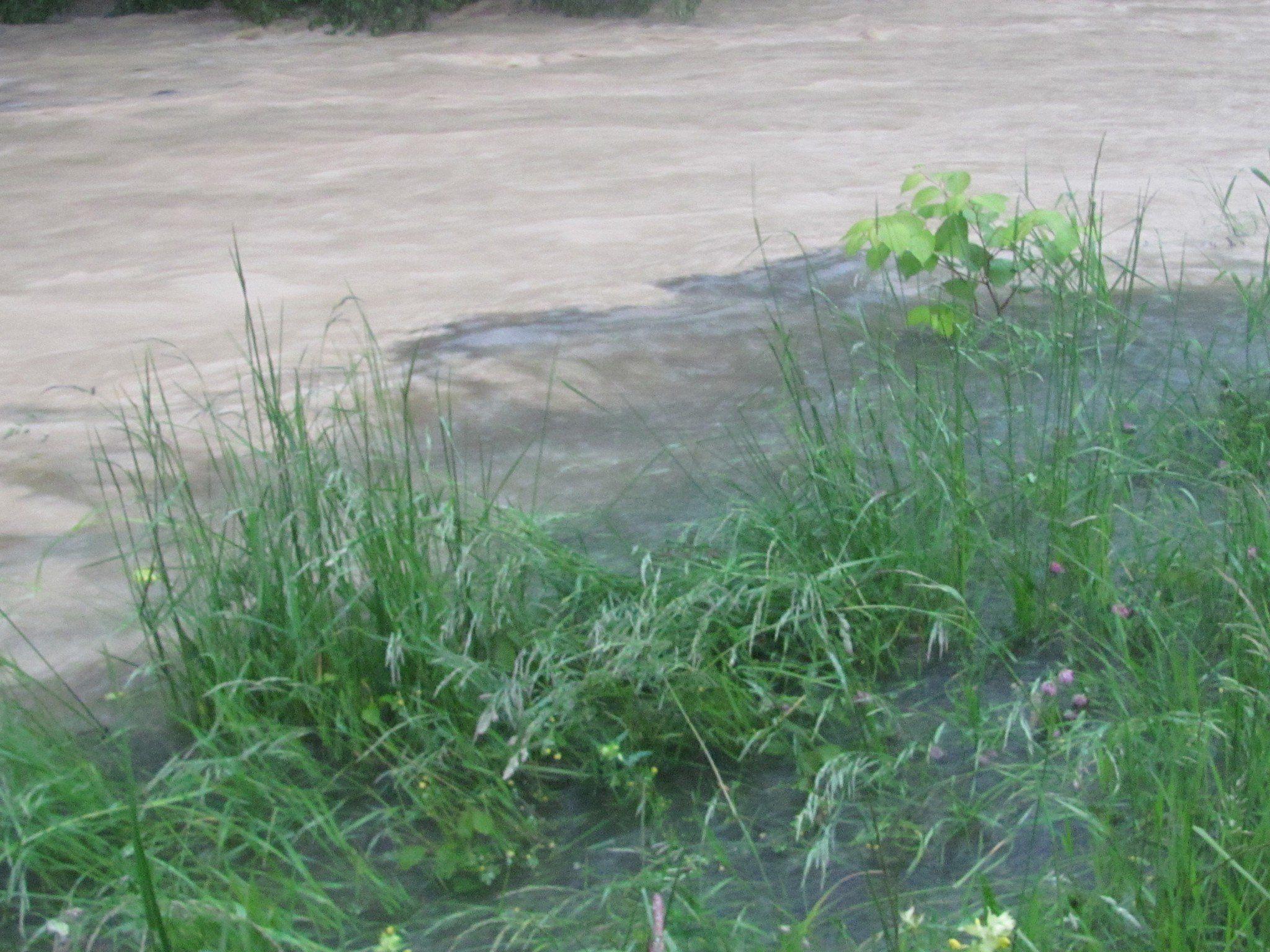 Dieses Foto soll Kanalwasser zeigen, das in die Leiblach einfließt (dunkle Flüssigkeit).