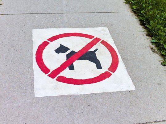 Hunde müssen drinnen bleiben.