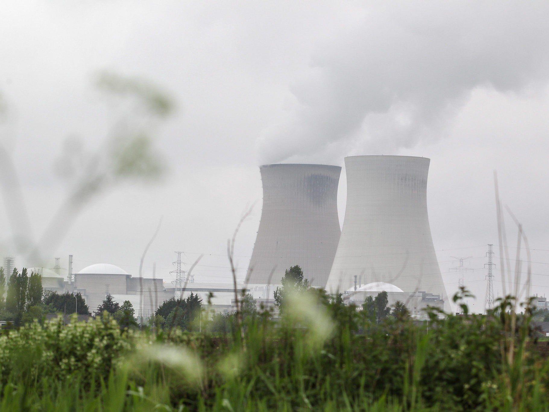 Die Risse in der Schutzhülle sind laut der Atomaufsicht nicht gefährlich.