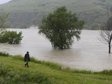 Zum Teil sind die Wasserstände in Niederösterreich bereits gesunken.