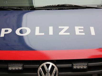 18 Autoeinbrüche in Wien und NÖ geklärt
