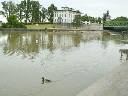 Auch in Wien soll der Wasserpegel weiter steigen.