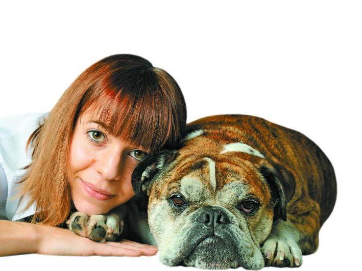 """""""Meine Englische Bulldogge Tequila ist mein bester Freund und treuer Weggefährte. Ich will nicht, dass er nach seinem Tod in der Tierkörperverwertung landet"""", so Besitzerin Theresa Kessler (25) aus Bregenz. Nach seinem Tod wird der Rüde in einem Heimtierkrematorium verbrannt werden."""