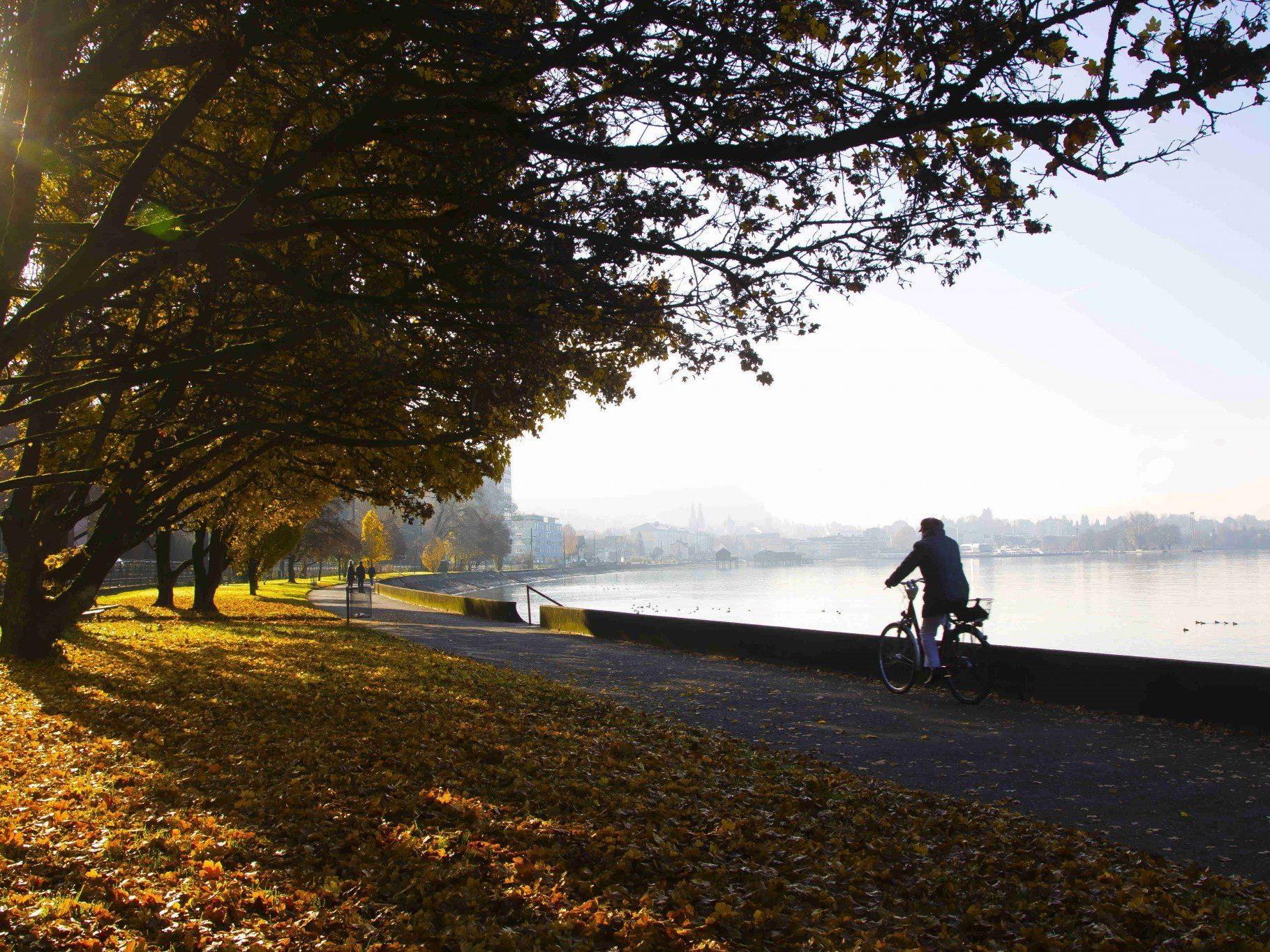 Zuversichtlicher Blick in den Herbst: Spielt das Wetter mit, könnte der Rekord vom Vorjahr übertroffen werden.