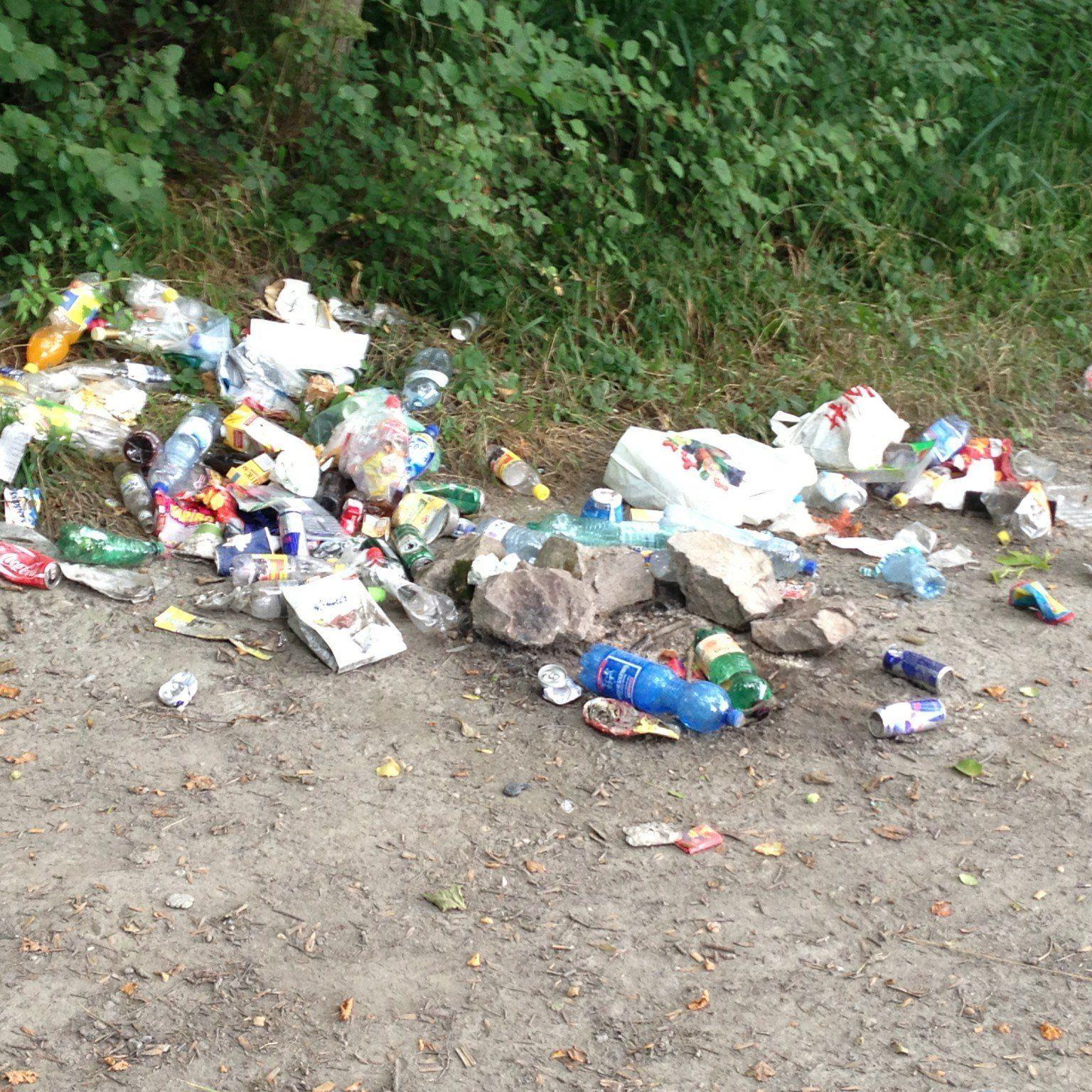 Müllhalde am Alten Rhein