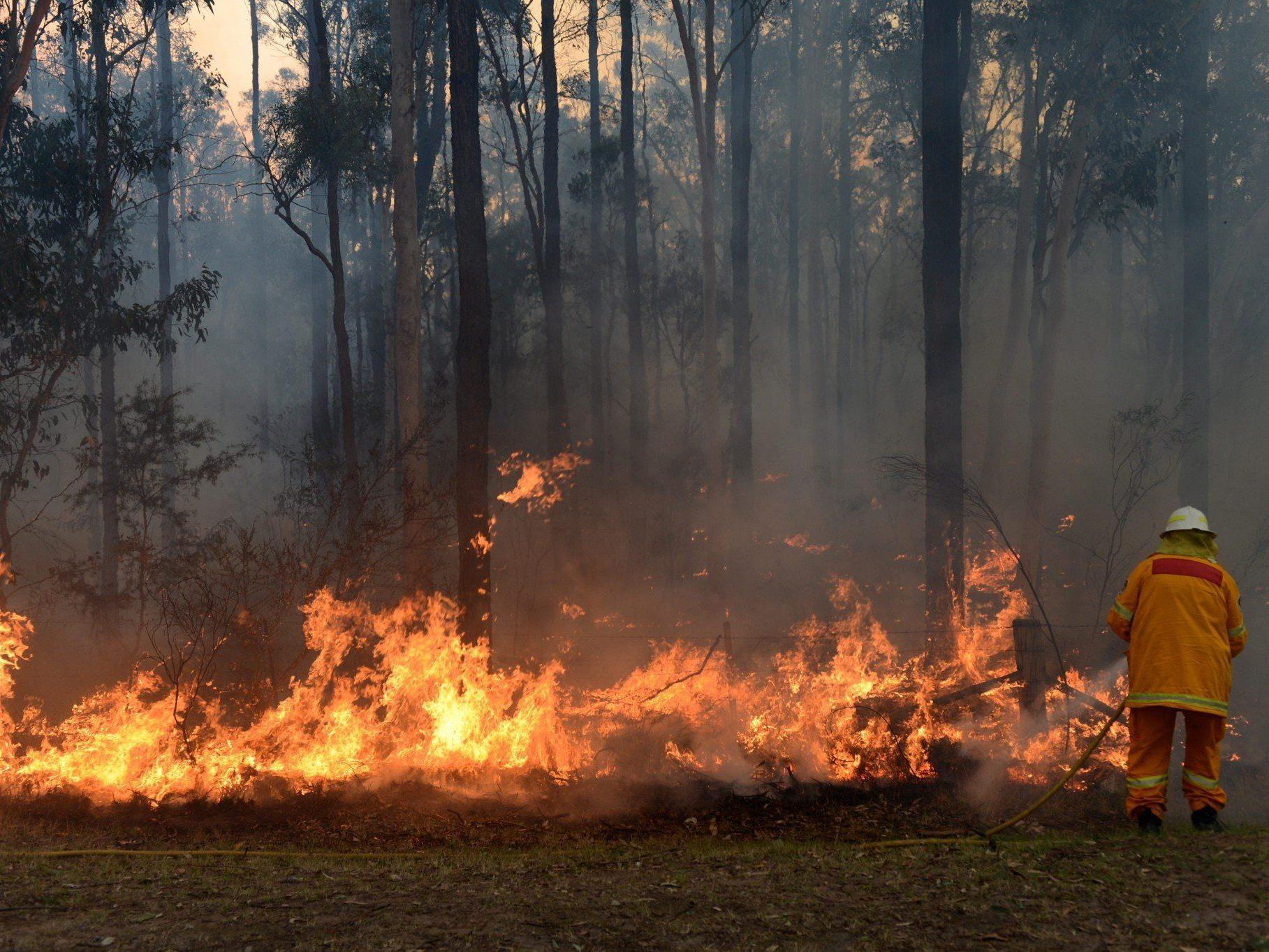 Dutzende Buschfeuer läuten in Australien den Sommer ein.
