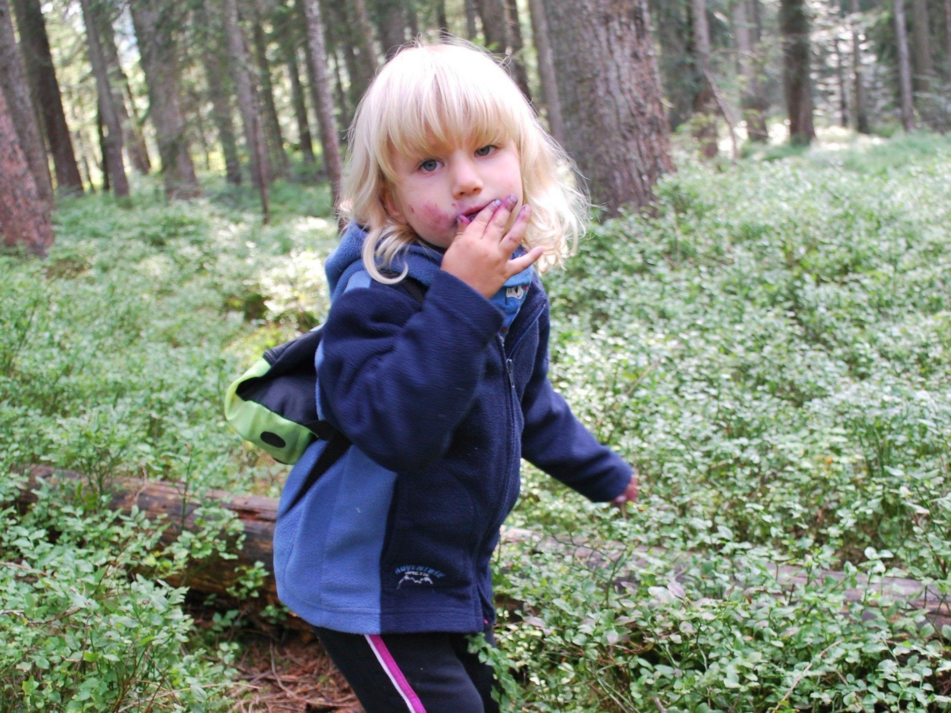 Fritzi im Beerenwald. Sie mag Heidelbeeren besonders gern.