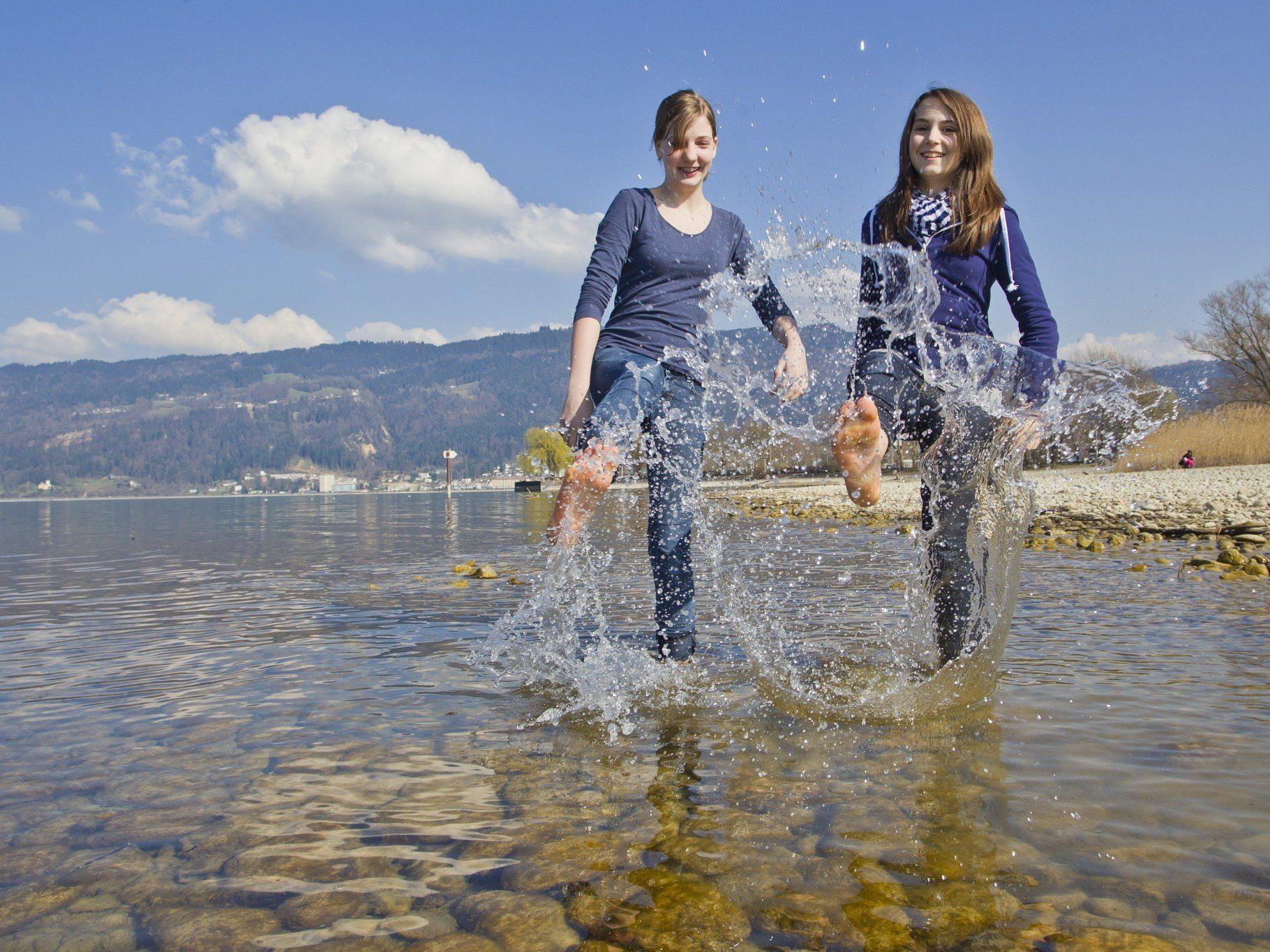 Der Bodensee macht Ökologen Freude.