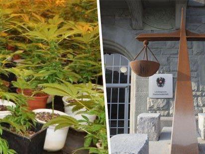 Die beiden angeklagten Türken hatten im Dezember 2010 einen Bregenzer zuhause überfallen.