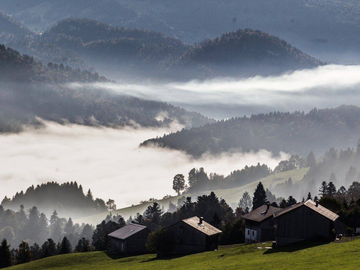 Sonne und Nebel am Donnerstag.