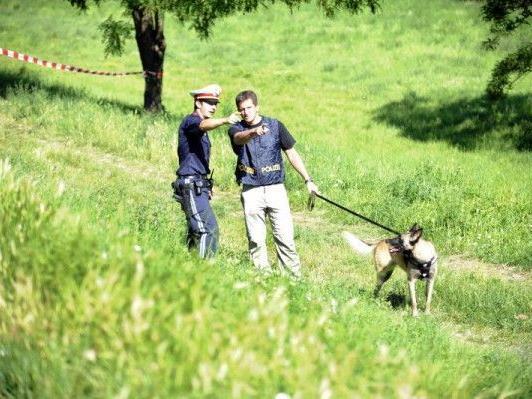 Der Vermisstenfall hatte in NÖ für lange - erfolglose - Suchaktionen gesorgt.