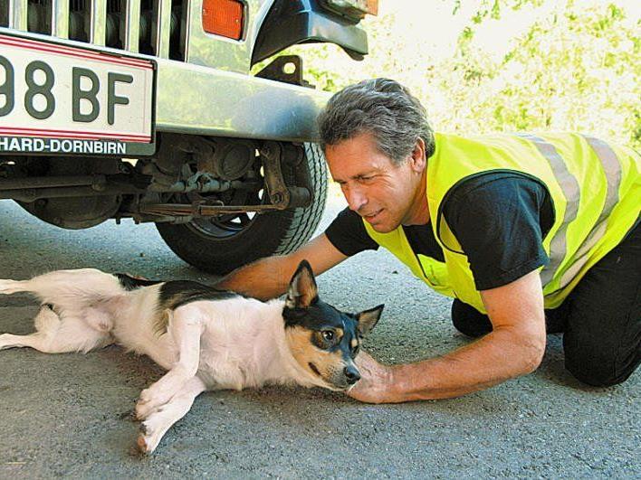 """673 ehrenamtliche Einsätze hat Karl Heinz Hanny im vergangenen Jahr absolviert – verletzte Hunde sind immer wieder unter seinen """"Patienten""""."""