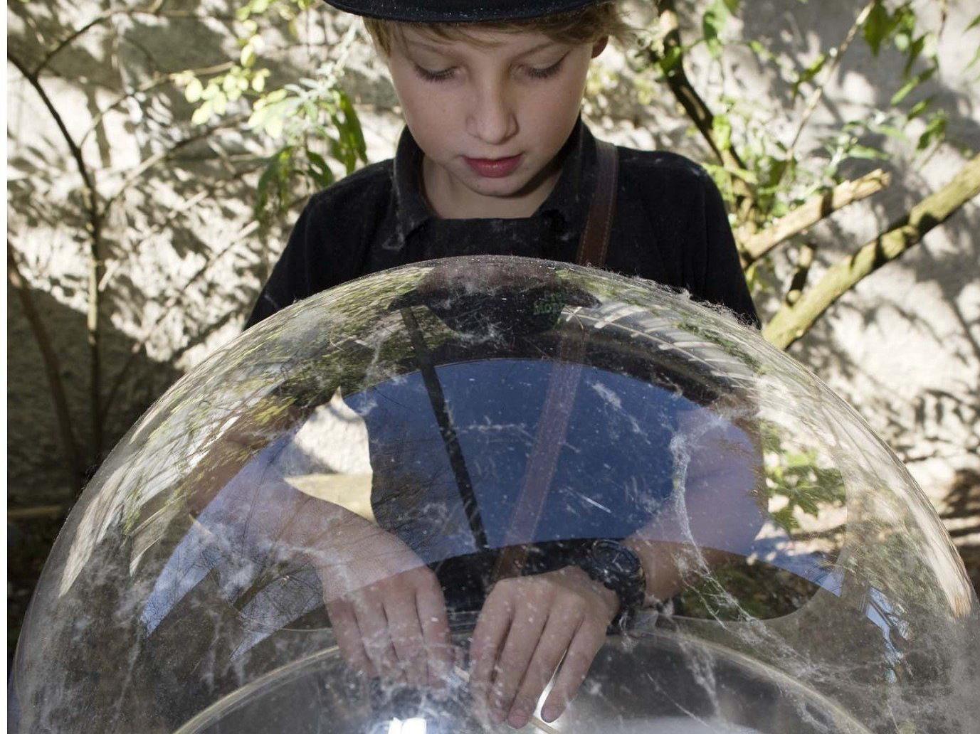 Die Montessorie Schule in Altach wird zum Erlebnisbasar.