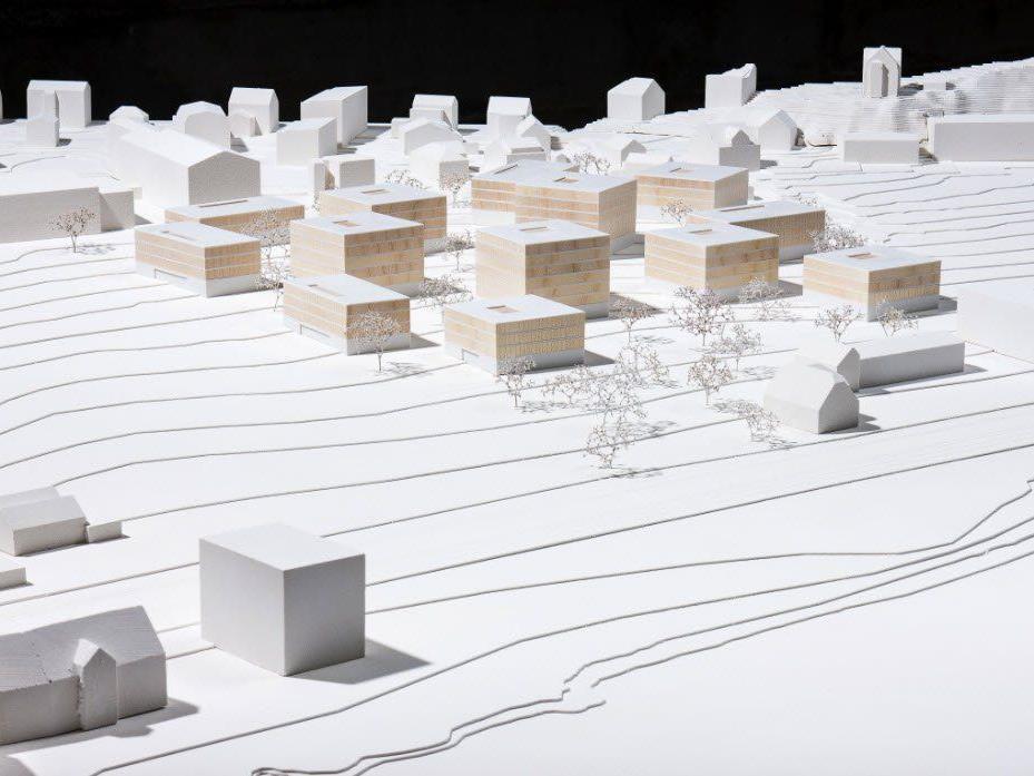 Das Siegerprojekt sieht 13 Baukörper mit Blick auf den See und ein großzügiges Außenraumkonzept vor.