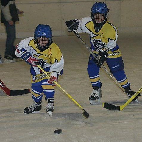 Jeden Dienstag und Donnerstag gibt es eine Stunde lang die Möglichkeit für die ganze Familie Eishockey in Rankweil gratis zu spielen.