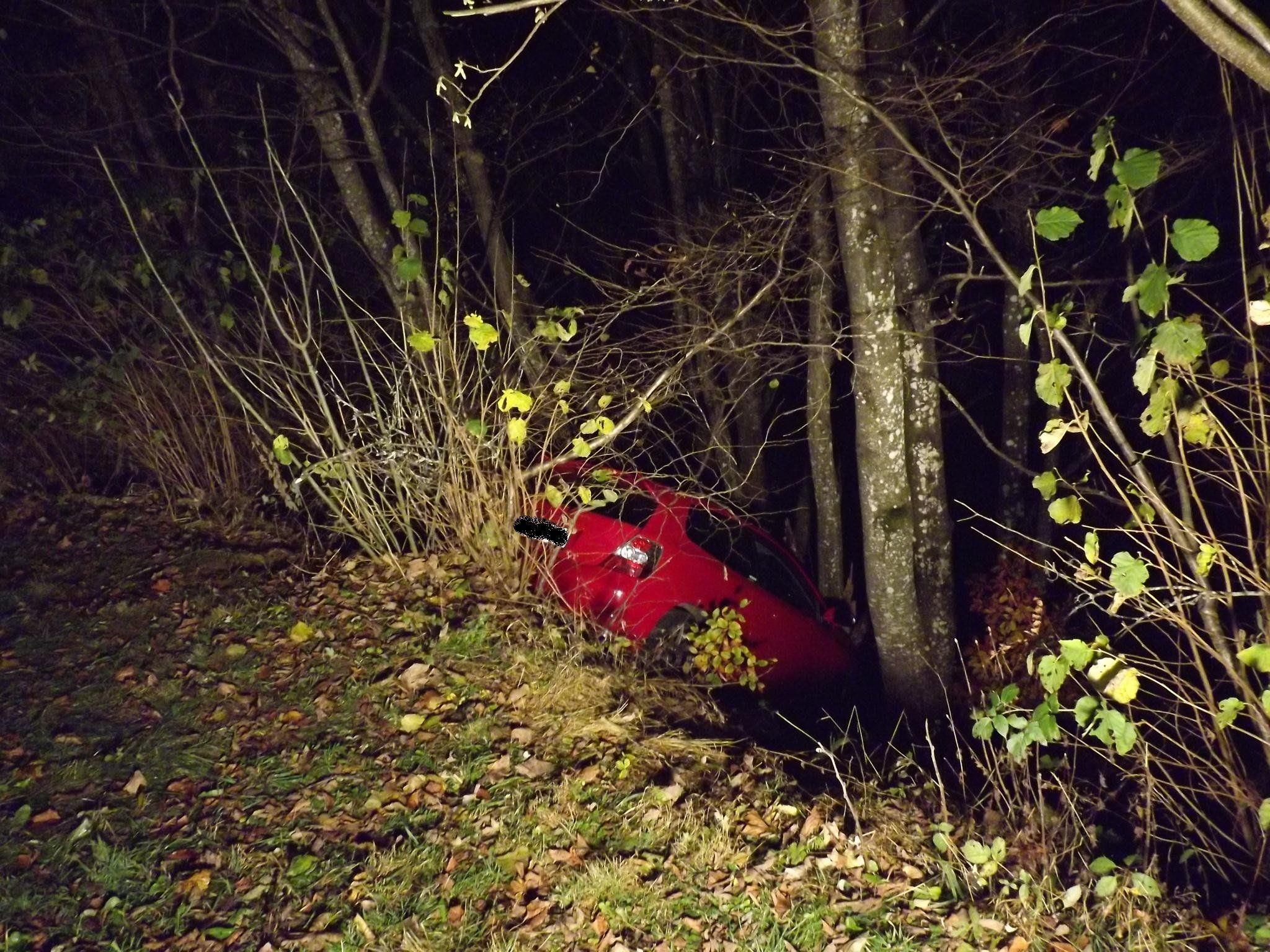 Der Pkw-Lenker blieb unverletzt