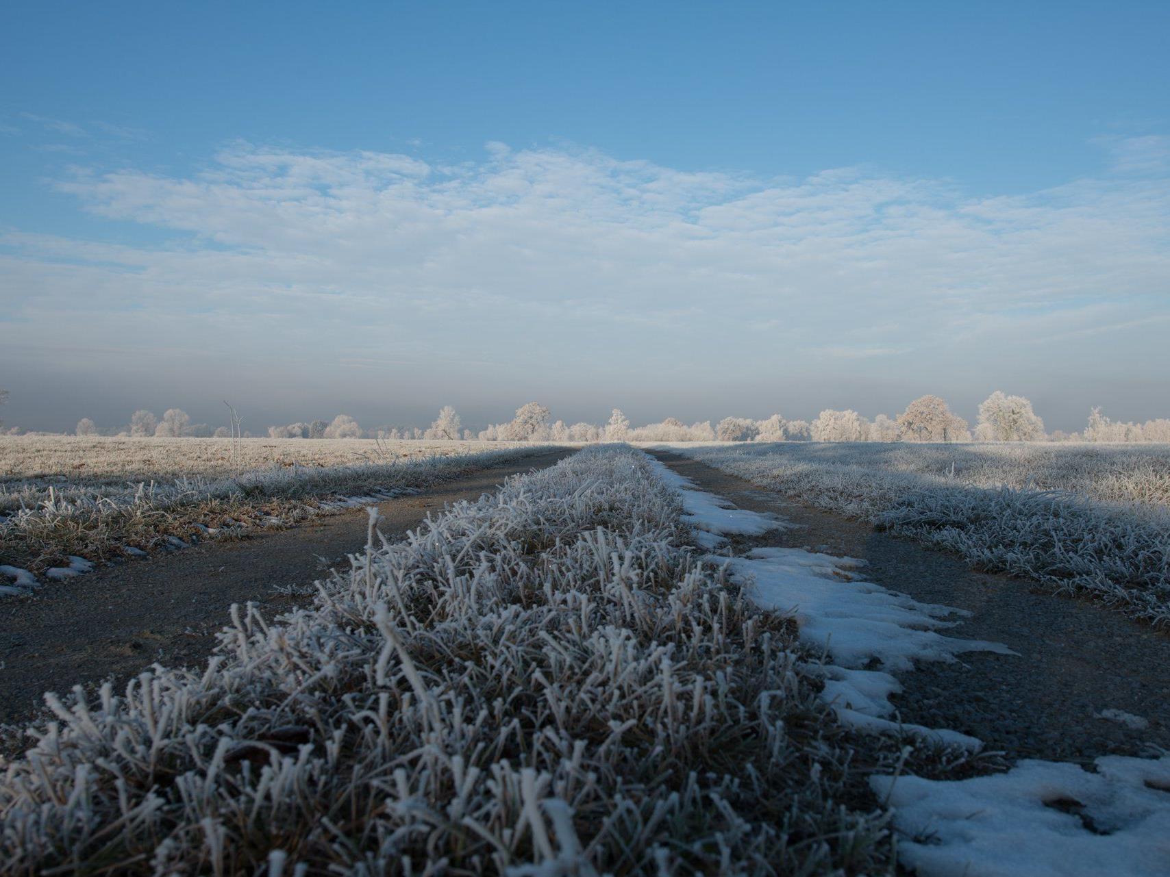 Manfred Gasser hat die Winterstimmung im Lauteracher Ried eingefangen.