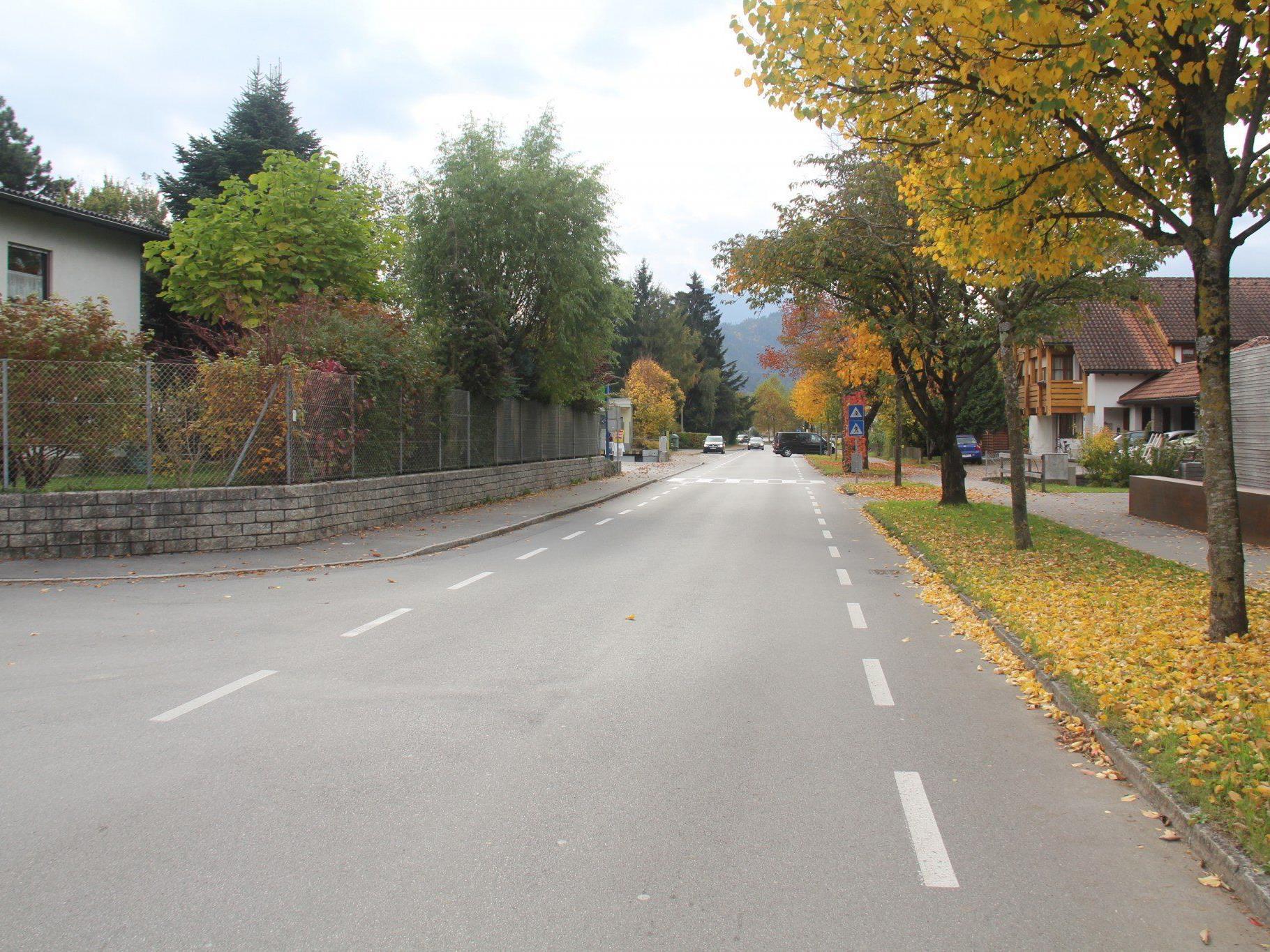 VOL.AT stellt die Straßen in Vorarlberg in einer großen Serie vor.  Im Bild die Vorderlandstraße.