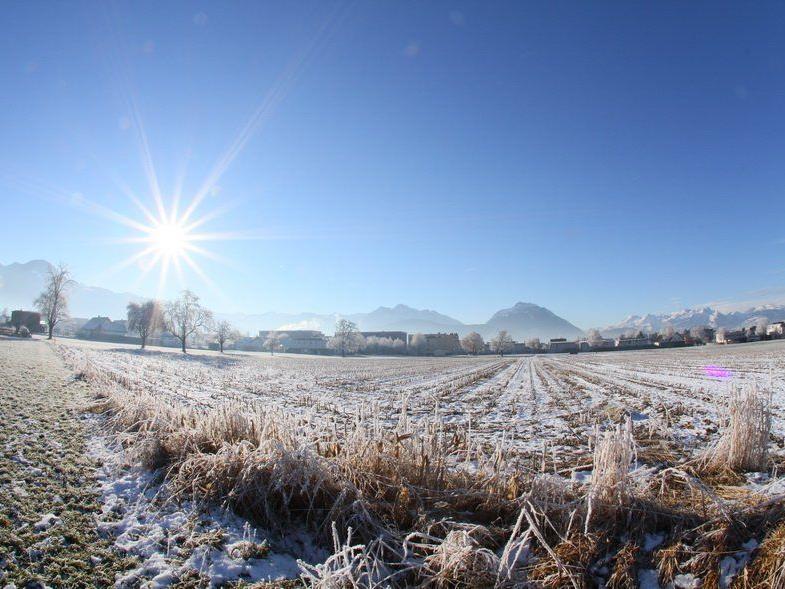 Winterliche Eisidylle entlang der Frutz auf der Rankweiler Seite.
