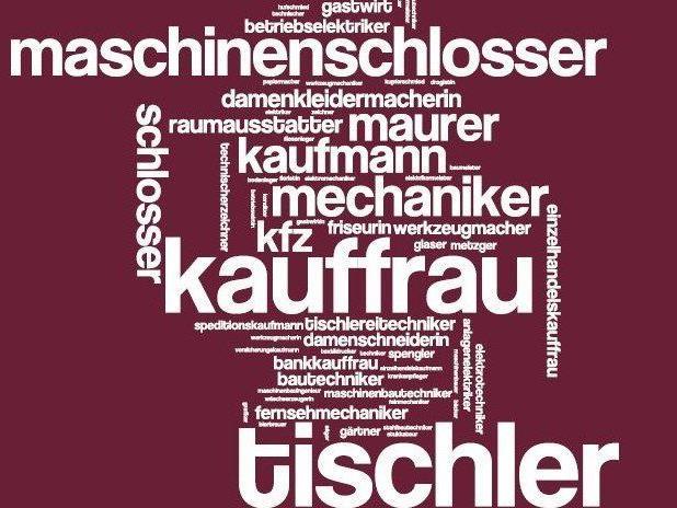 Der Ball findet am Samstag den 11. Jänner 2014 im Wiesenbachsaal in Schlins statt.