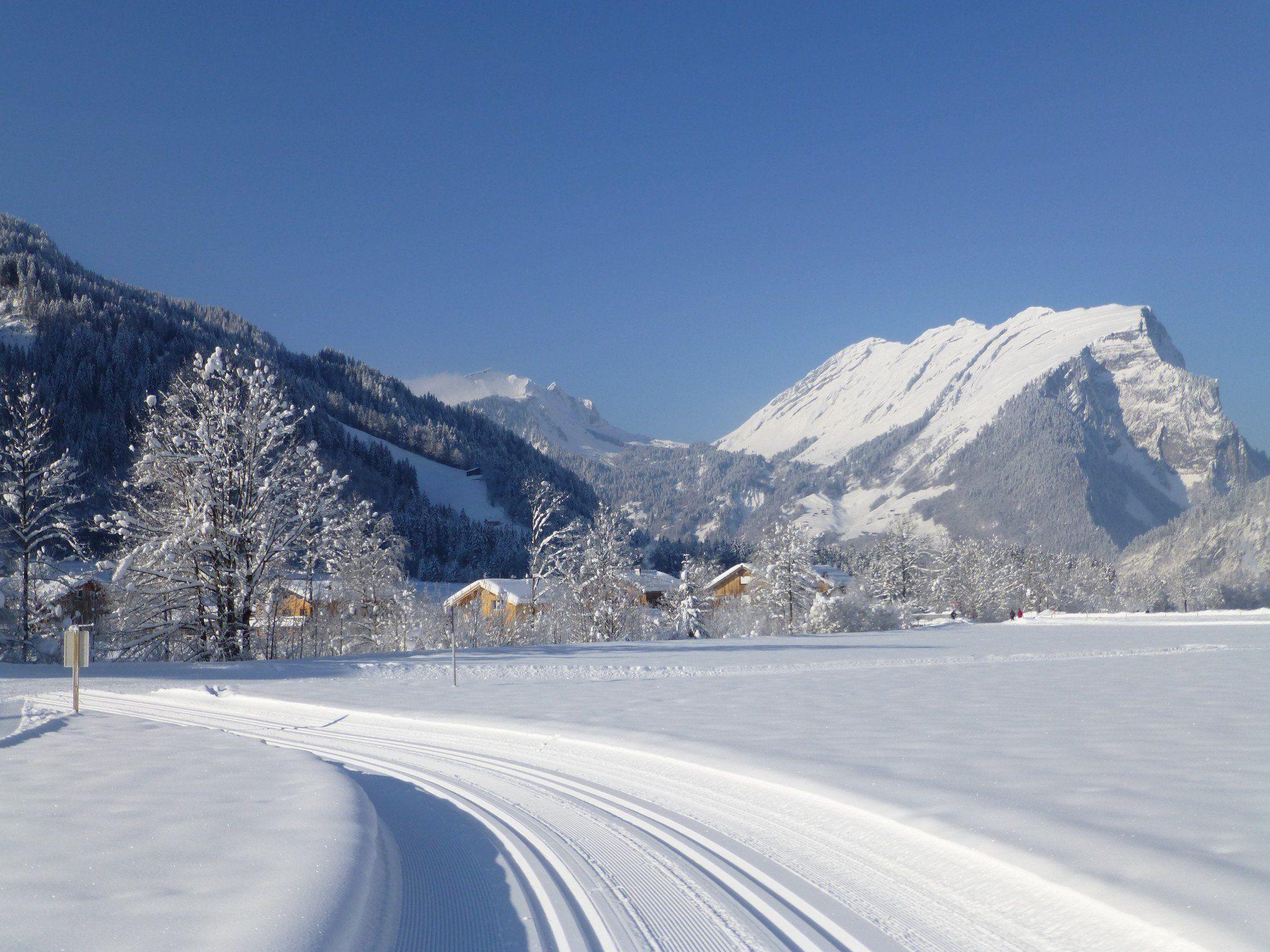 50 Kilometer klassische Langlauf-, 13 Kilometer Skatingloipen und 35 Kilometer Winterwanderwege in Au-Schoppernau.