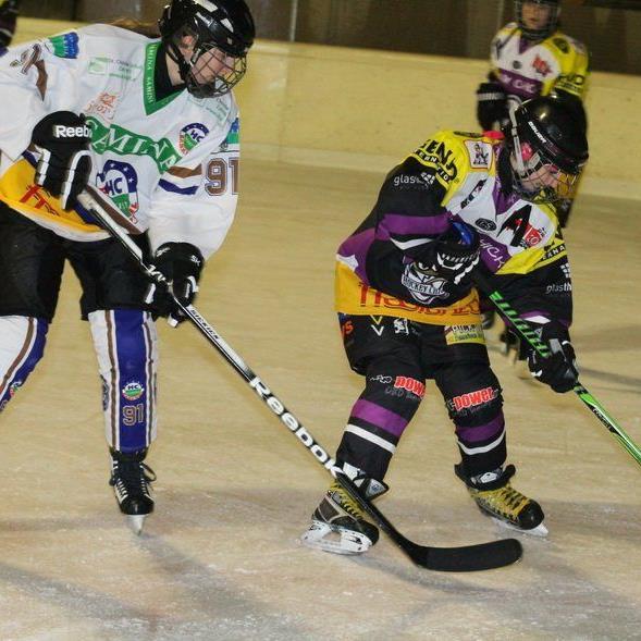Die HC Rankweil Ladies treffen am Sonntag im Nachbarschaftsduell auf die VEU Hockey Chicks.