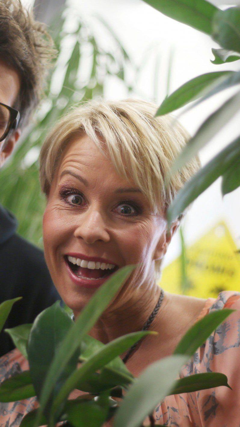 Sonja Zietlow und Daniel Hartwich moderieren das RTL-Dschungelcamp.