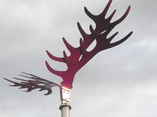 Rot lackiertes Flügelpaar in Lustenau gestohlen.