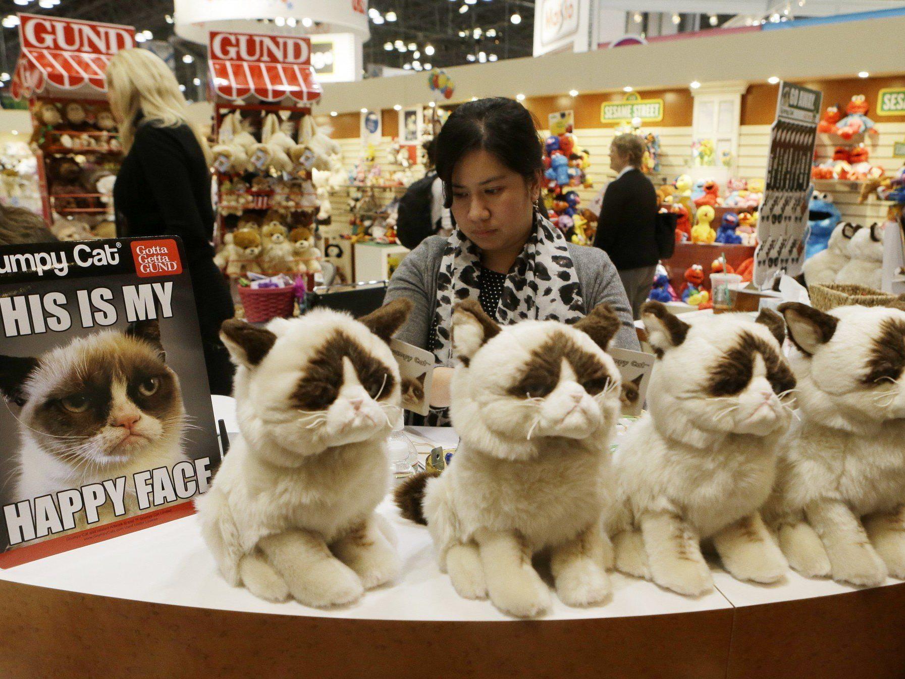 Grumpy Cat wurde zur Kultfigur im Internet.