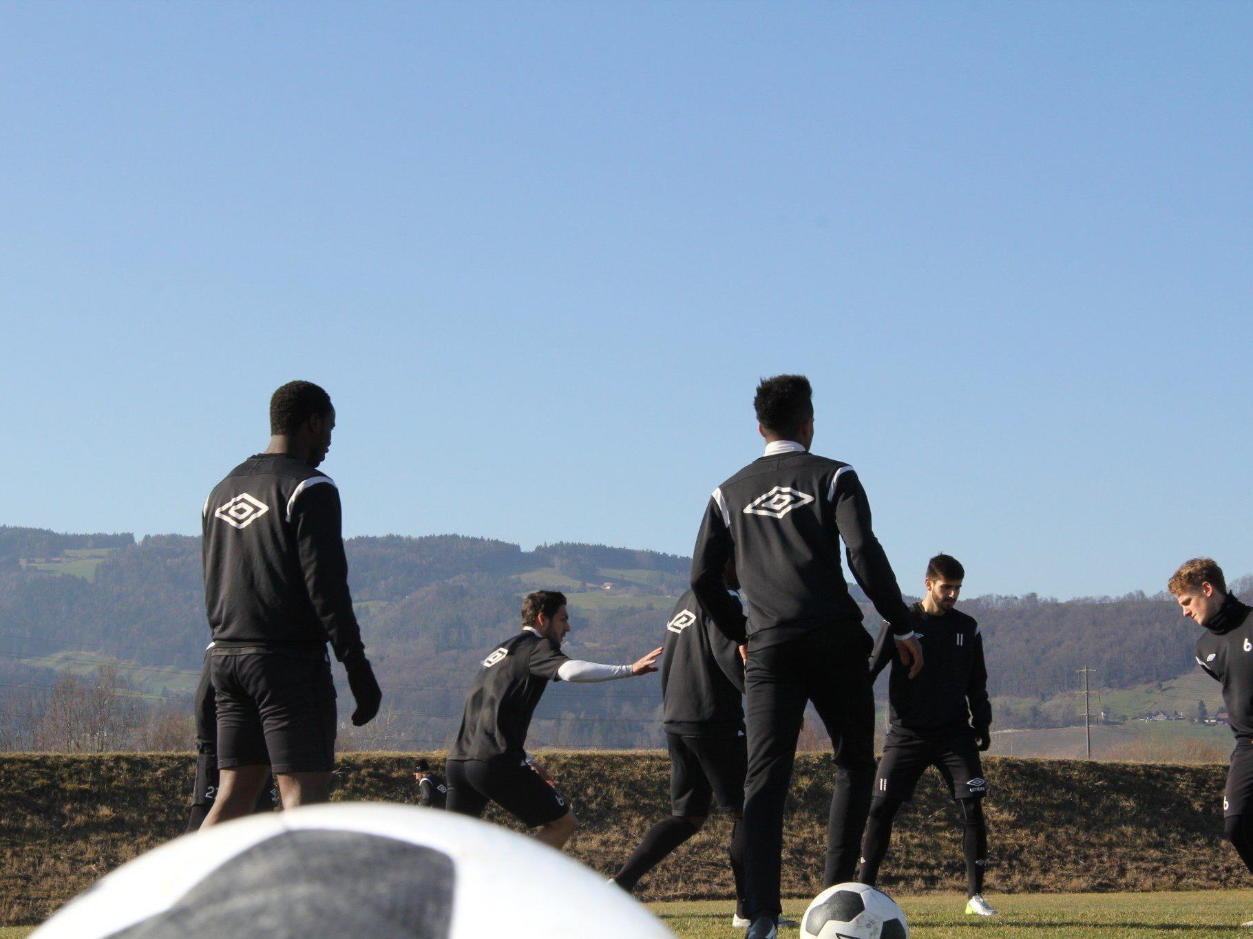 Jose Alex Mem-Ikeng vorerst bis Saisonende bei Austria Lustenau unter Vertrag.