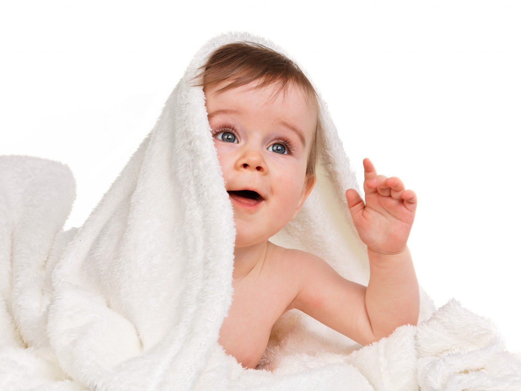 Geburtenplus von 0,5 Prozent