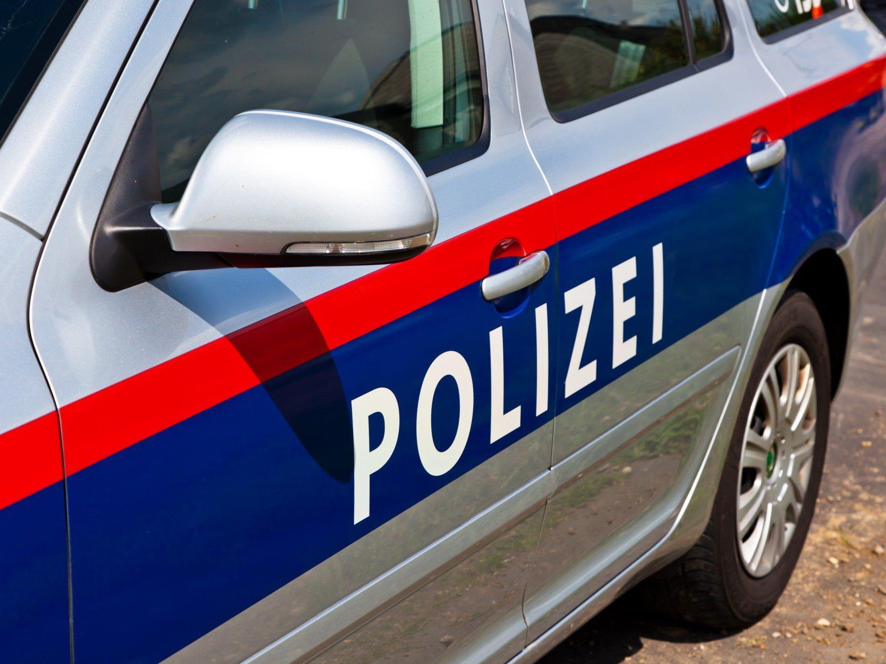 Polizei fahndet nach Dieben.