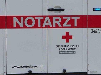 Die Mutter der jungen Pkw-Lenkerin verstarb noch an der Unfallstelle.
