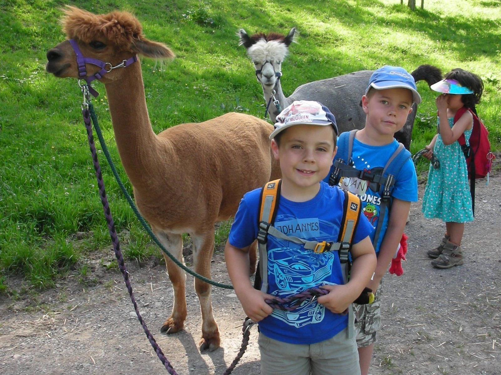 Gemeinsam mit Lamas und Alpacas übernehmen die Kinder Verantwortung für die Tiere
