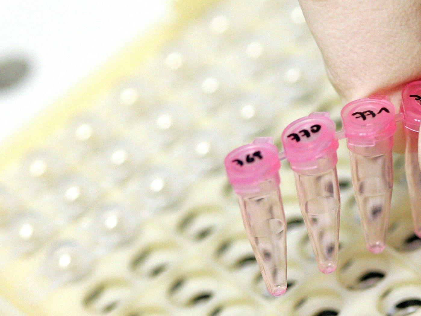 Kleines Gerät verabreicht etwa auch bei Parkinson automatisch Medikamente.