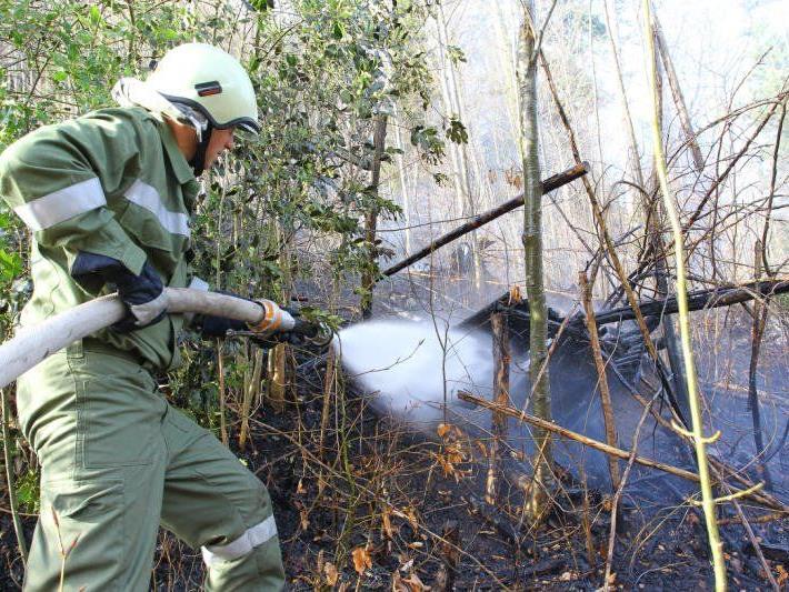 Unterholz fing aus ungeklärter Ursache Feuer