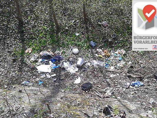 Müllablagerungen an der Dornbirnerach stoßen auf wenig Gegenliebe bei den Bürgerforums-Teilnehmern. Die Stadt ist bereits aktiv.