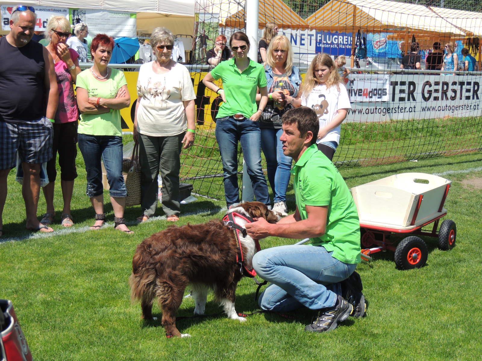 Hundetrainer Uwe Friedrich informierte an praktischen Beispielen  über den Umgang mit Hunden